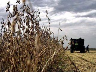 El agro espera una temporada con inestabilidad clim�tica y lluvias