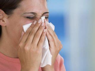 �Qu� es la influenza?