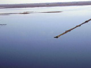 El desborde de la laguna La Picasa