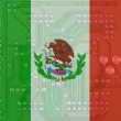 Analizan el potencial de Mxico en la industria del software