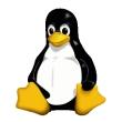 El 31,5% de las grandes empresas usa Linux