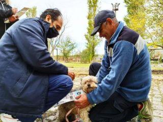 Pergamino: Comenzó la Campaña de Vacunación Antirrábica gratuita para perros y gatos