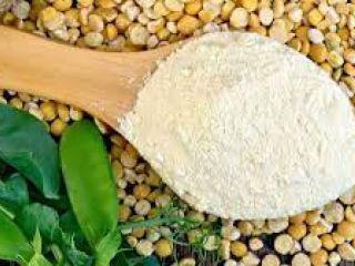 Estiman exportaciones récord de harina y aceite de soja por US$ 20.000 millones por mejores precios