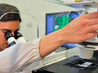 Conicet incorporó 820 nuevos cargos para la carrera de Investigador Científico y Tecnológico