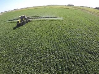 Agroquímicos: El campo cuestiona a la Justicia de San Nicolás