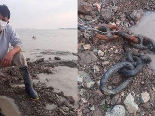 Un pescador encontró restos de cadenas que habrían sido utilizadas en la Batalla de la Vuelta de Obligado